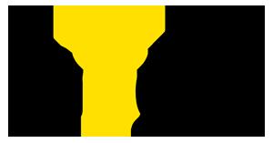 Miigle-Logo-Updated-BlacknYellow-Final-300pxWide